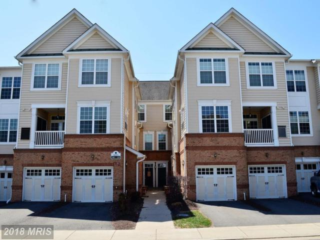 20375 Belmont Park Terrace #110, Ashburn, VA 20147 (#LO10208467) :: The Greg Wells Team