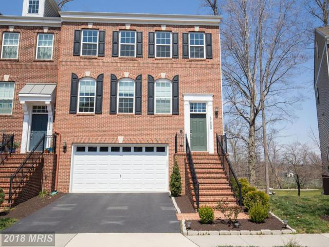 47650 Leopards Chase Terrace, Sterling, VA 20165 (#LO10209360) :: The Greg Wells Team