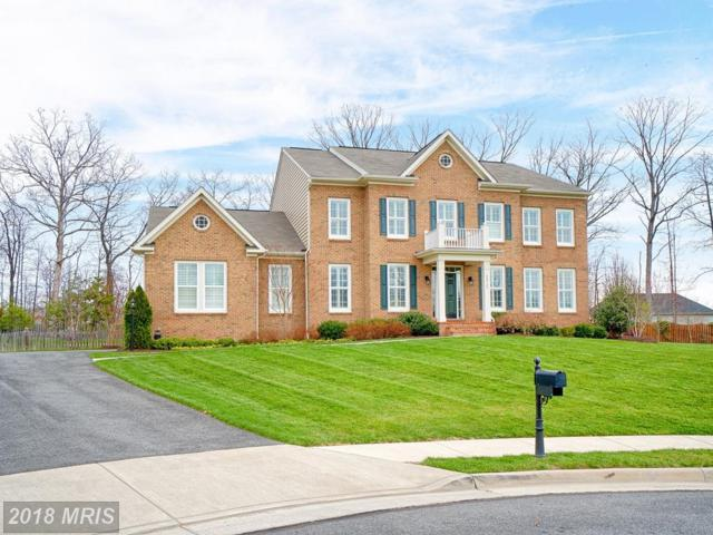 42729 Pocosin Court, Ashburn, VA 20148 (#LO10209813) :: LoCoMusings