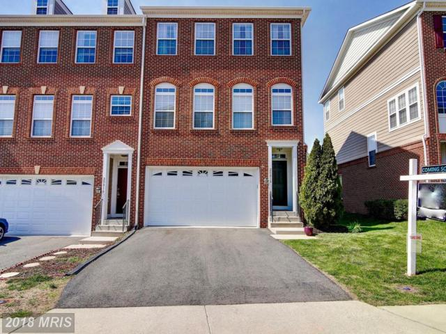 20818 Houseman Terrace, Ashburn, VA 20148 (#LO10210401) :: LoCoMusings
