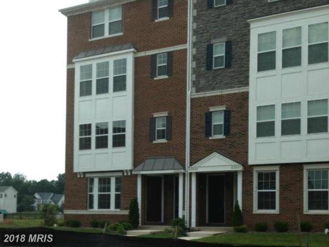 43997 Vaira Terrace #1, Chantilly, VA 20152 (#LO10210471) :: The Greg Wells Team