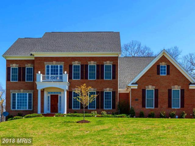15910 Waterford Creek Circle, Hamilton, VA 20158 (#LO10210979) :: LoCoMusings