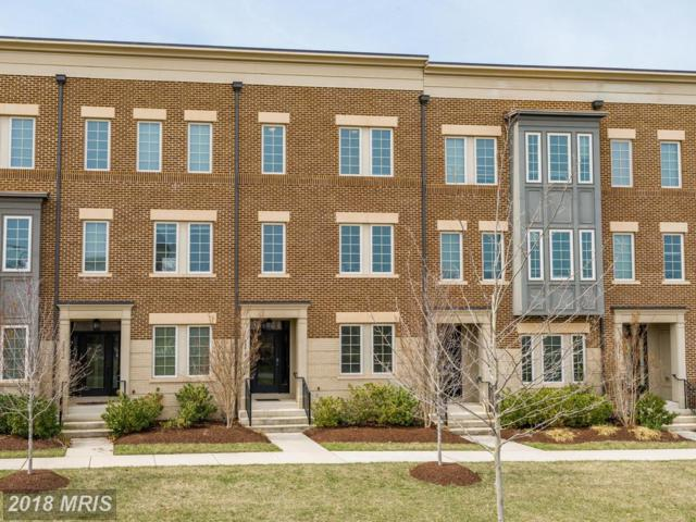 22818 Goldsborough Terrace, Ashburn, VA 20148 (#LO10211097) :: LoCoMusings