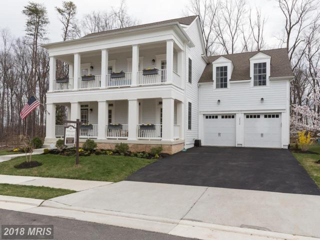 24958 Greengage Place, Aldie, VA 20105 (#LO10211625) :: The Gus Anthony Team