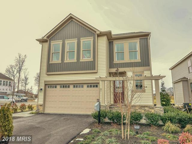 0 Somerby Drive, Chantilly, VA 20152 (#LO10212297) :: Charis Realty Group