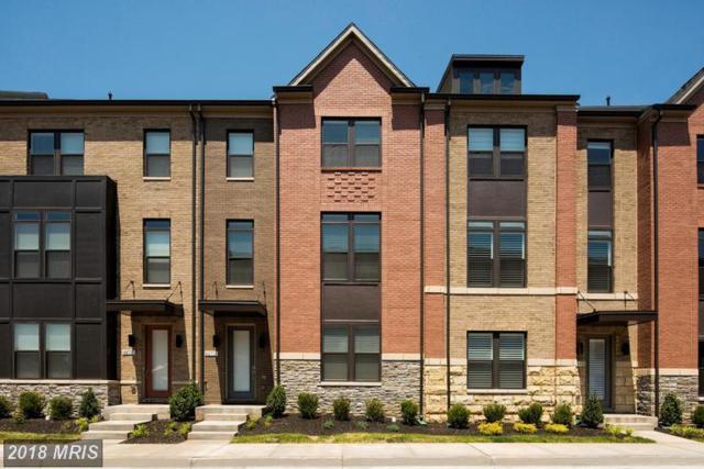 44721 Ellsworth Terrace, Ashburn, VA 20147 (#LO10212310) :: The Greg Wells Team