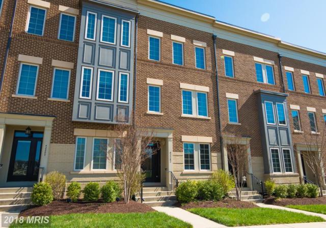 42282 Yancey Terrace, Ashburn, VA 20148 (#LO10212747) :: The Greg Wells Team