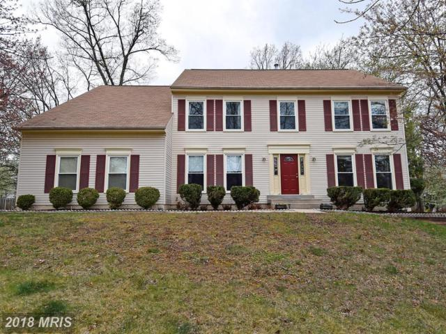 44136 Bristow Circle, Ashburn, VA 20147 (#LO10212902) :: The Greg Wells Team