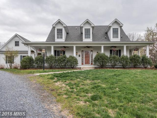 23334 Wildwood Lane, Middleburg, VA 20117 (#LO10213038) :: The Greg Wells Team