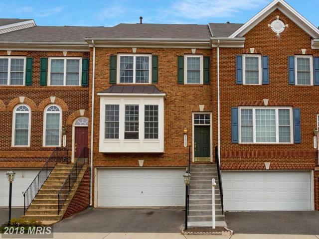 21757 Ladyslipper Square, Ashburn, VA 20147 (#LO10213477) :: Browning Homes Group
