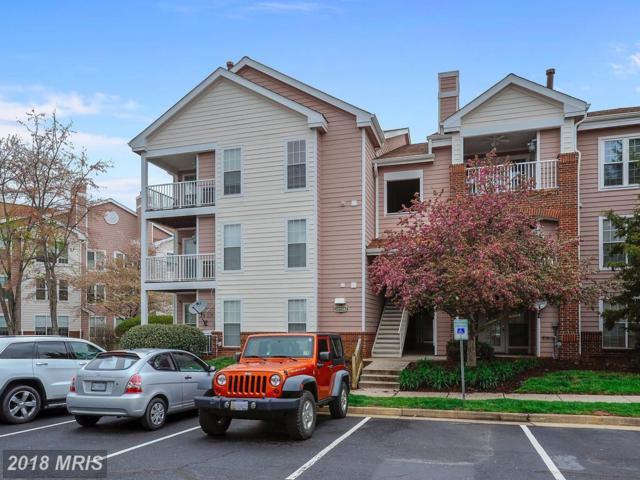 20958 Timber Ridge Terrace #303, Ashburn, VA 20147 (#LO10213578) :: The Greg Wells Team