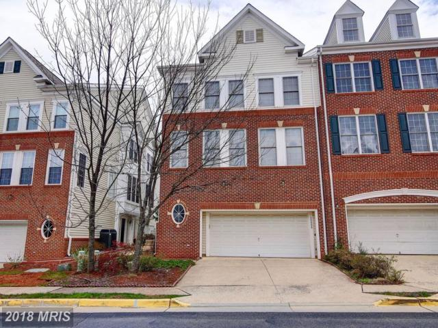 20866 Pitt Terrace, Sterling, VA 20165 (#LO10213671) :: Browning Homes Group