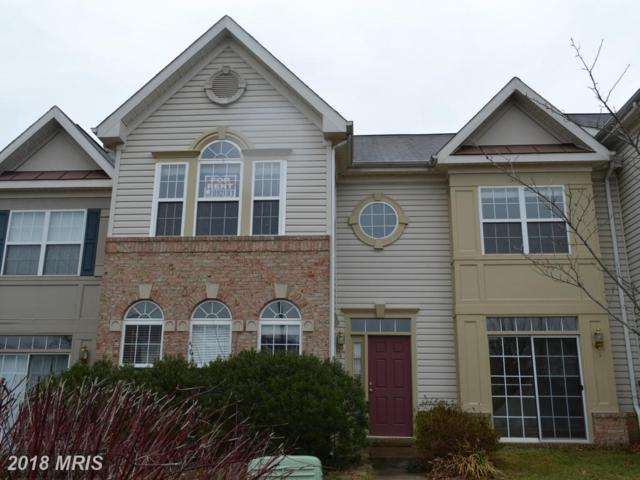 20974 Albion Lane, Ashburn, VA 20147 (#LO10213689) :: The Greg Wells Team