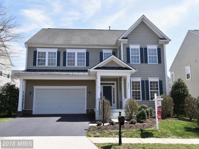 22874 Courtland Park Drive, Ashburn, VA 20148 (#LO10213832) :: The Greg Wells Team