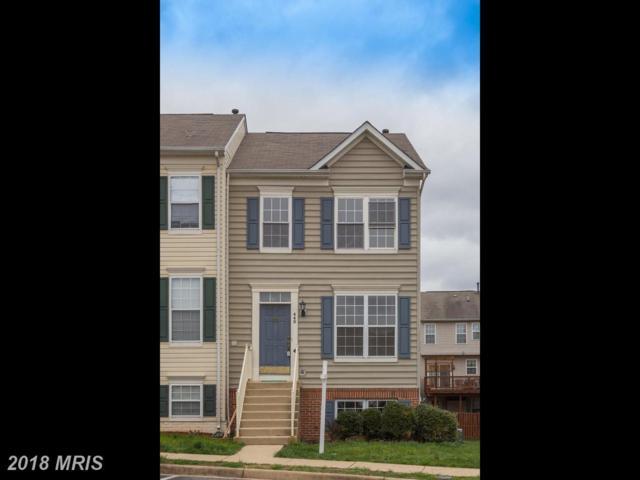 440 Andromeda Terrace NE, Leesburg, VA 20176 (#LO10213837) :: LoCoMusings