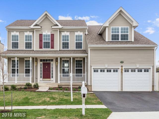 17666 Cleveland Park Drive, Round Hill, VA 20141 (#LO10214104) :: LoCoMusings