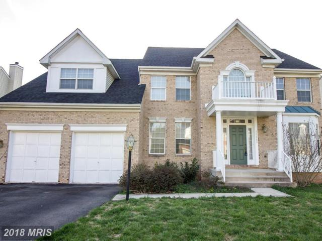 20889 Great Falls Forest Drive, Sterling, VA 20165 (#LO10214483) :: LoCoMusings
