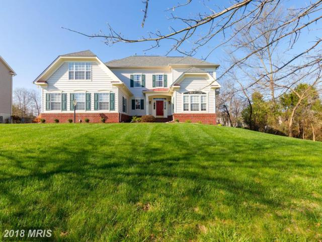 25257 Oribi Place, Aldie, VA 20105 (#LO10214753) :: The Dwell Well Group
