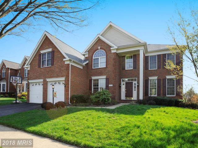 43244 Valiant Drive, Chantilly, VA 20152 (#LO10215604) :: The Dwell Well Group