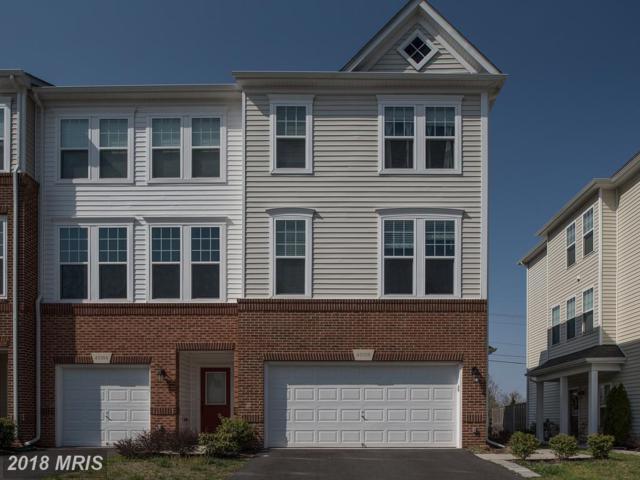 43306 Novi Terrace, Ashburn, VA 20147 (#LO10215608) :: Lucido Agency of Keller Williams