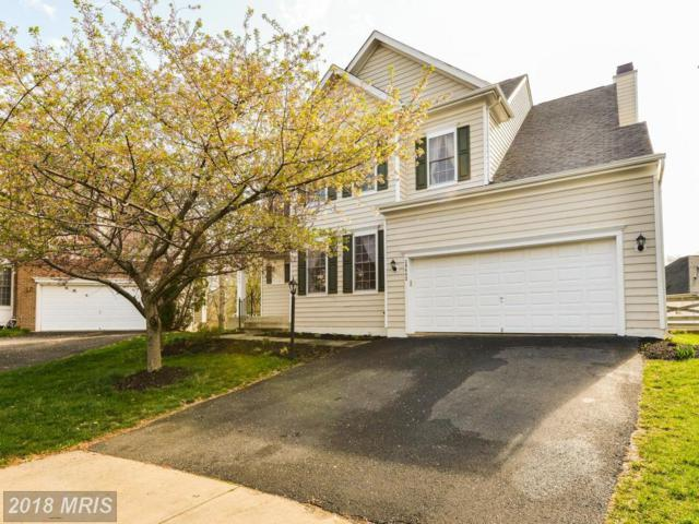 20442 Swecker Farm Place, Sterling, VA 20165 (#LO10215620) :: Great Falls Great Homes