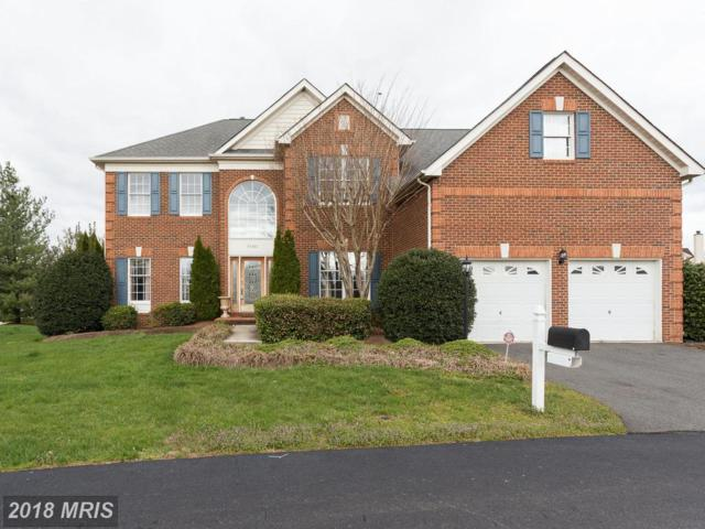 25382 Kettle Lane, Chantilly, VA 20152 (#LO10215626) :: The Dwell Well Group