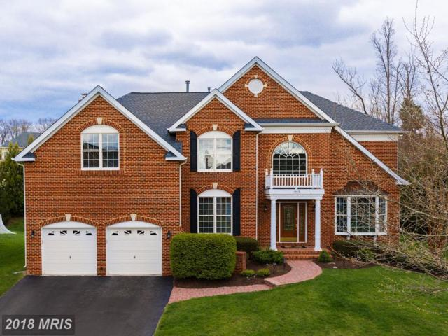 19676 Stanford Hall Place, Ashburn, VA 20147 (#LO10216096) :: Wilson Realty Group