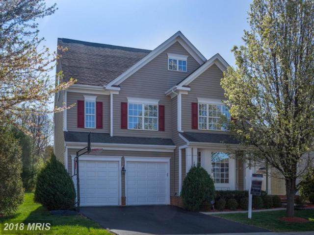 20648 Sutherlin Place, Sterling, VA 20165 (#LO10216201) :: The Belt Team
