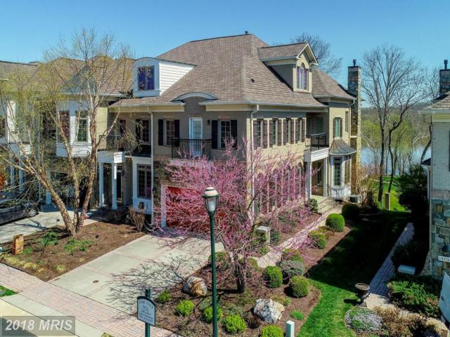 18376 Fairway Oaks Square, Leesburg, VA 20176 (#LO10216246) :: Provident Real Estate