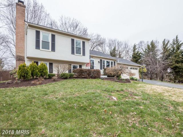 10135 Yorktown Drive, Sterling, VA 20165 (#LO10216326) :: The Belt Team
