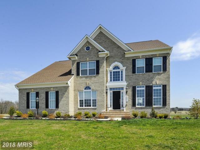 14474 Falconaire Place, Leesburg, VA 20176 (#LO10216445) :: Provident Real Estate
