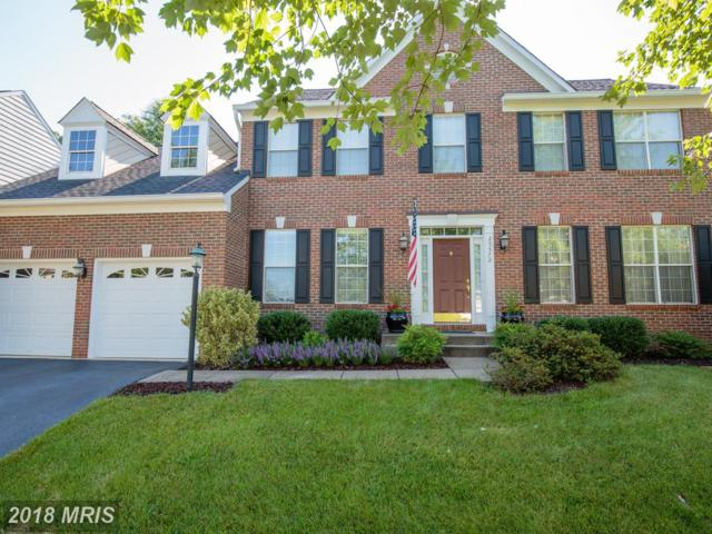 25572 Quits Pond Court, Chantilly, VA 20152 (#LO10216482) :: Network Realty Group