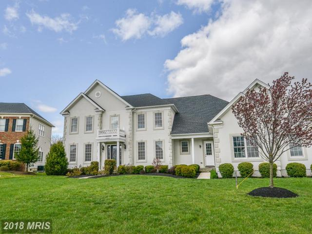 20033 Forest Farm Lane, Ashburn, VA 20147 (#LO10216610) :: AJ Team Realty