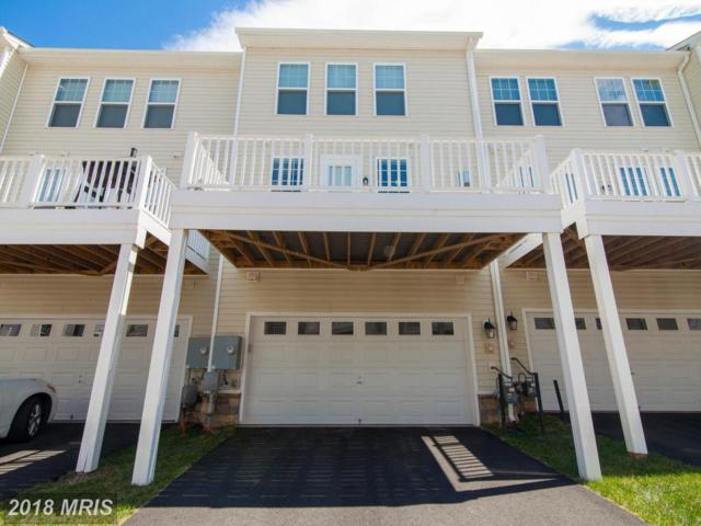 23565 Kingsdale Terrace, Ashburn, VA 20148 (#LO10216898) :: Lucido Agency of Keller Williams