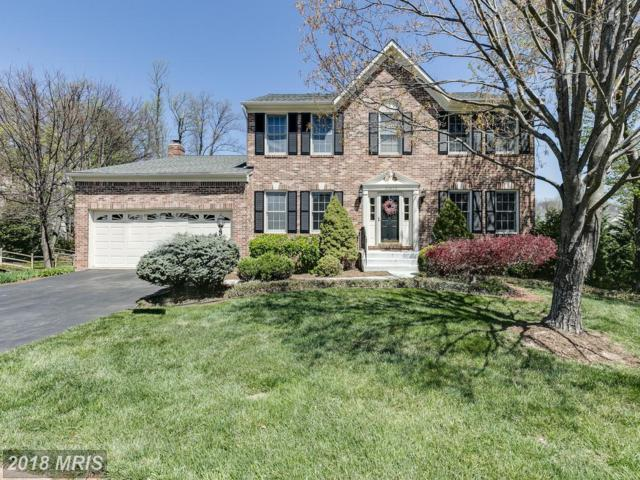 20622 Fairwater Place, Sterling, VA 20165 (#LO10217853) :: The Belt Team