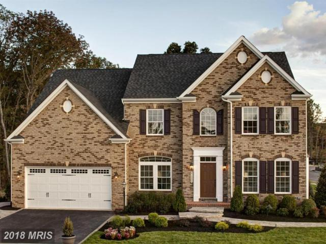 41533 Arlington Oaks Drive, Aldie, VA 20105 (#LO10218227) :: Pearson Smith Realty