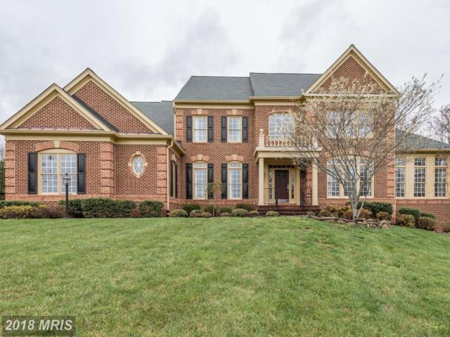 27563 Equine Court, Chantilly, VA 20152 (#LO10218410) :: Network Realty Group