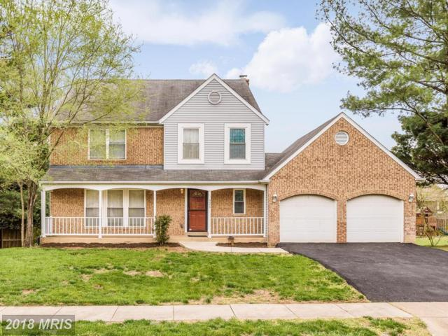 320 Silver Ridge Drive, Sterling, VA 20164 (#LO10220607) :: AJ Team Realty