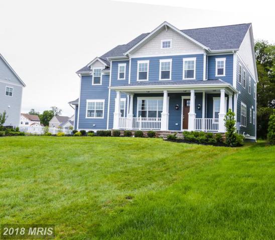 1 Brittingham Place, Aldie, VA 20105 (#LO10220662) :: Labrador Real Estate Team