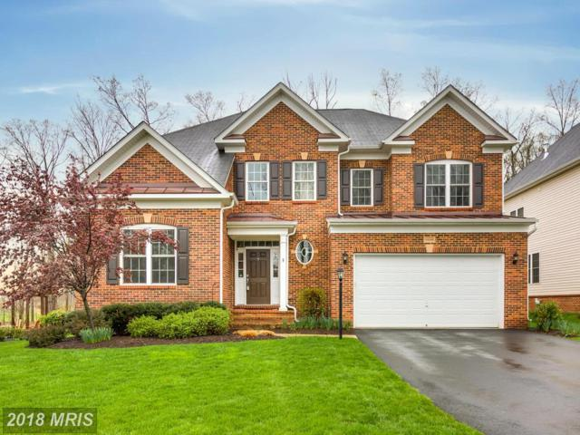 42349 Stardust Way, Ashburn, VA 20148 (#LO10220731) :: The Putnam Group