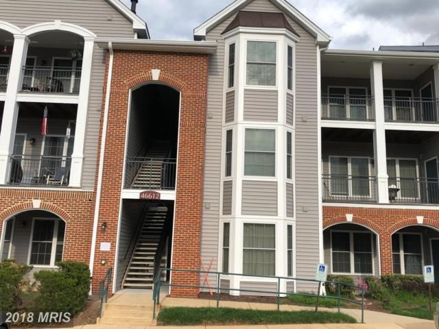 46612 Drysdale Terrace #103, Sterling, VA 20165 (#LO10220765) :: The Putnam Group