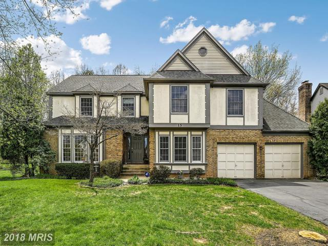 15 Stafford Court, Sterling, VA 20165 (#LO10220804) :: The Putnam Group