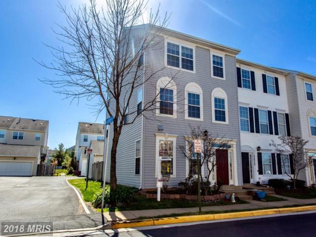 22936 Adelphi Terrace, Sterling, VA 20166 (#LO10221725) :: The Putnam Group
