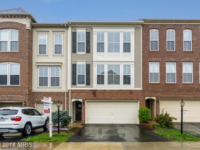 42708 Twinleaf Drive, Ashburn, VA 20148 (#LO10221792) :: The Putnam Group
