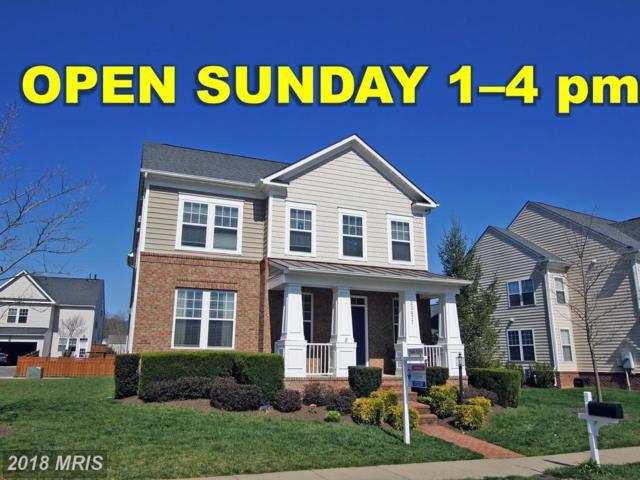 22477 Aging Oak Drive, Leesburg, VA 20175 (#LO10221920) :: The Putnam Group