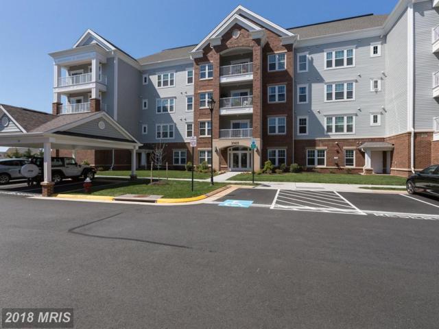 20655 Hope Spring Terrace #404, Ashburn, VA 20147 (#LO10227267) :: Dart Homes