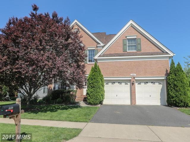 25917 Quinlan Street, Chantilly, VA 20152 (#LO10232927) :: Circadian Realty Group