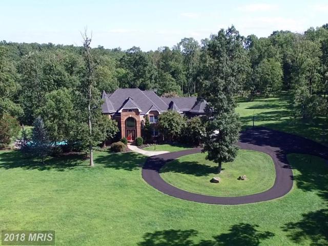41155 Trotter Lane, Paeonian Springs, VA 20129 (#LO10235111) :: LoCoMusings