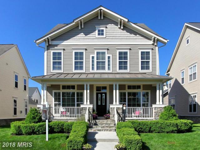 23358 Higbee Lane, Ashburn, VA 20148 (#LO10236426) :: Advance Realty Bel Air, Inc