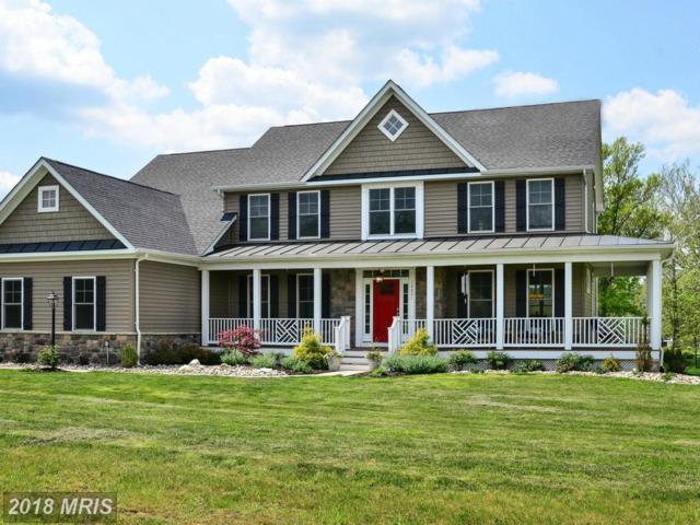 14821 Ingalls Court, Leesburg, VA 20176 (#LO10237198) :: Keller Williams Pat Hiban Real Estate Group